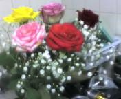 バラばら薔薇
